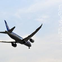 羽田の空を飛ぶB787