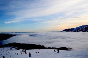 白馬岩岳スキー場から五竜方面の雲海をのぞむ