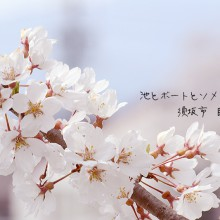 須坂市 臥竜公園の桜
