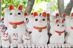 世田谷区豪徳寺の招き猫