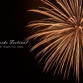 サマーナイト ファイヤーフェスティバルフィナーレ(2014年) 諏訪市の花火