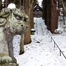 冬の雪景色 戸隠神社 宝光社